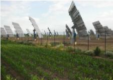 """Solar park """"Los Arcos"""""""